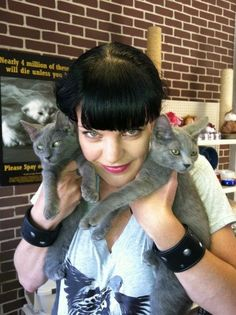 Pauley Perrette & some Abby Cats | Community Post: 45 Amazing Pictures Of Celebrities And Cats