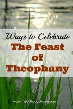 The Feast of Theophany (or Epiphany) is one of the major feasts of the Church year.  Learn simple, practical ways to celebrate the feast as a family!