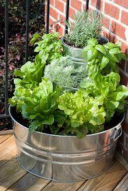 { the vintage wren }: :: tiered lettuce & herb garden