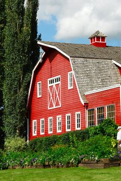 ˚Berry Barn - Saskatoon, Saskatchewan - Have a Saskatoon berry pie with vanilla ice cream and when you are allready there check out the little art gallery and the gift shop full of handicrafts made by local artisans. Country Barns, Country Life, Country Living, Country Houses, Country Roads, Barn Pictures, Farm Barn, Farms Living, Red Barns
