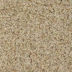 MODERN MOMENT III BEACH PARTY Texture TruSoft® Carpet - STAINMASTER®