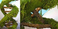 Living Double Helix-Habitat Horiculture - Habitat Horticulture