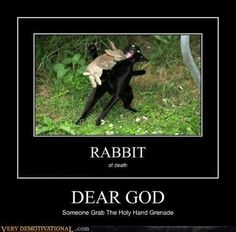 funny demotivational posters, rabbit of death