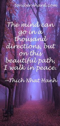 The mind can go in a thousand directions, but on this beautiful path, I walk in peace.  --Thich Nhat Hanh
