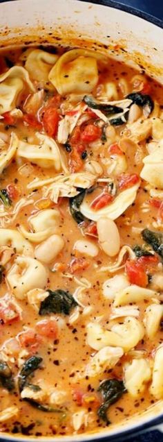 This Creamy Tuscan Garlic Tortellini Soup from Alyssa over at The Recipe Critic really hits the spot on a cold winter night! It is an easy to make soup recipe that has cheesy tortellini, diced tomatoes, spinach and a few other simple ingredients. Garlic Tortellini, Chicken Tortellini Soup, Tortellini Recipes, Soup Recipes, Dinner Recipes, Cooking Recipes, Dinner Ideas, Creamy Tortellini Soup, Tuscan Garlic Chicken