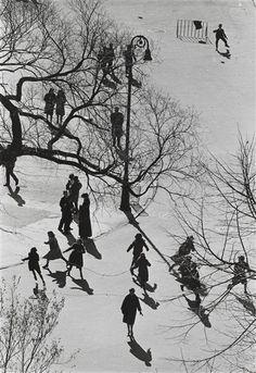 untitled [Washington Square] (André Kertész, 1962)
