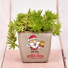 Most current Pics Ceramics pots india Strategies If you are thinking of gift something nice and unique on this Christmas, you can opt for this sedum Christmas Is Coming, Christmas 2019, Merry Christmas, Christmas Gifts, Xmas, Sedum Plant, Online Gift Store, Personalized Gifts, Planter Pots
