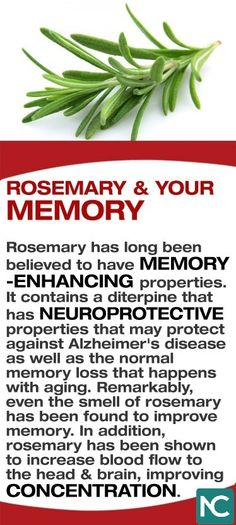 Rosemary has long been believed to have memory-enhancing properties. It contains a diterpine that has neuroprotective properties that may protect against Alzheimer's disease as well as the normal memory loss that happens with aging. Remarkably, even the smell of rosemary has been found to improve memory. In addition, rosemary has been shown to increase blood flow to the head & brain, improving concentration.