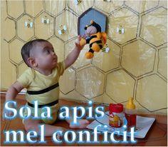 Sola apis mel conficit Somente a abelha faz mel :  The bee alone makes honey