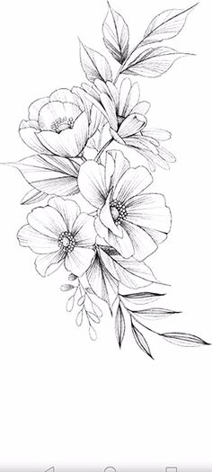 25 Ideas and information for drawing beautiful flowers - Flower Tattoo Designs - # information Beautiful Flower Drawings, Flower Art Drawing, Flower Sketches, Floral Drawing, Beautiful Flowers, Floral Tattoo Design, Flower Tattoo Designs, Flower Tattoos, Flower Tattoo Drawings