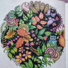 Colored By S Field Johanna Basford Enchanted Forest