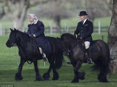 Favourite pastime: The Queen is believed to be riding her beloved black Fell pony, Carltonlima Emma. The monarch looked relaxed as she enjoyed the spring weather