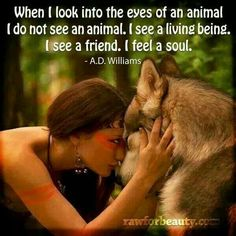 Animals, love, soul, friend