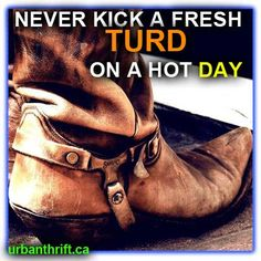 Never kick a fresh turd on a hot day. @Calgary Stampede #Stampede101