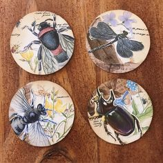 I've been seeing all your posts of these gorgeous little works of art and wanted to try myself. These are my first tries at artist trading coins. I love that they don't take long and look so great once they are done! Sorry to anyone who has an aversion to bugs! #atc #atccoin #atccoin #bugs #nature #mushrooms #littlepeople #vintage #vintagestyle #paper #paperlove