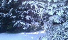 El marco ideal para un fin de semana de Ski en Bariloche. La última neveda de Octubre tal como la vivimos en el hotel Tunquelén.