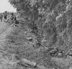 Second day of Normandy invasion along hedgerows near Sainte-Mère-Eglise; dead German soldiers and their equipment fill a ditch while nearby a wounded American is being treated. June 7, 1944. Photographer: Bob Landry