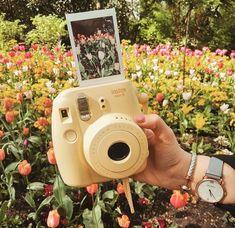 softeu - Instax Camera - ideas of Instax Camera. Trending Instax Camera for sales. #instaxcamera #camera #instax -  softeu Spring Aesthetic, Aesthetic Photo, Aesthetic Pictures, Aesthetic Yellow, Aesthetic Girl, Life Photography, Vintage Photography, Photography Aesthetic, Polaroid Pictures Photography