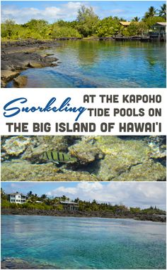 While visiting the Big Island of Hawai'i you must head to the Kapoho Tide Pools for some snorkeling. It is the best place on the island for snorkeling. Hawaii Honeymoon, Hawaii Vacation, Hawaii Travel, Vacation Spots, Travel Usa, Honeymoon Places, Honeymoon Destinations, Luxury Travel, Vacation Ideas