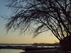 Early morning along The Strand in Gillingham [shared]
