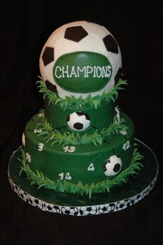 Soccer Ball Cake after another soccer season???