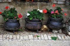 Pujols.Akvitaniya Köyü, Fransa. LiveInternet tartışması - Rus Service Çevrimiçi günlüğü