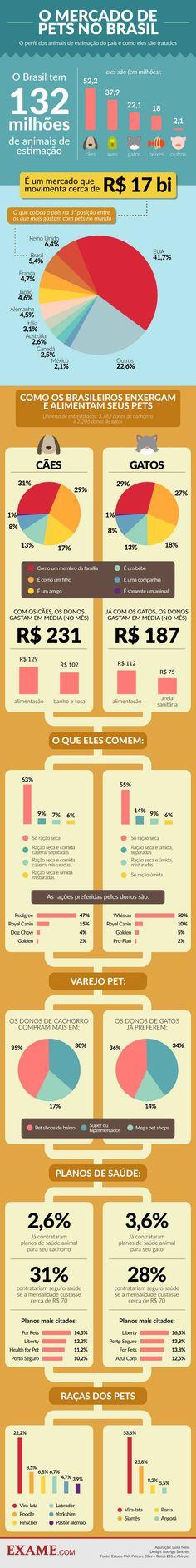 Como o brasileiro cuida e quanto gasta com seus pets | EXAME.com - Negócios, economia, tecnologia e carreira