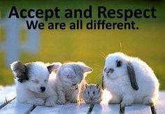 Diversity : )