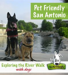 Dogs on Riverwalk - Pet Friendly San Antonio, TX