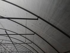Commercial Greenhouse, Utility Pole