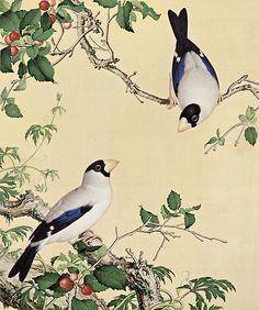 Picture of cherries from Xian'e Changhun album Giuseppe Castiglione 1688-1766