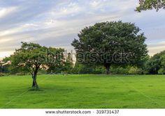 Walking outdoors sky bright park - stock photo