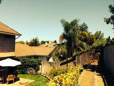 Backyard ~ Sheryl Lynn Johnson  (805) 907-8270 SherylLynn@ConnectingHeartsToHomes.com CalBRE #01446902