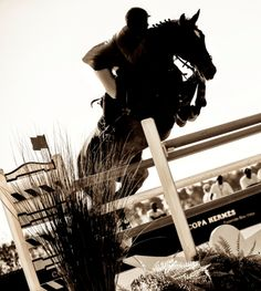 #ShowJumping Copa Hermès 2013. A stallion clears an obstacle at the Saut Hermes event in Paris.