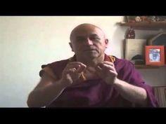 Matthieu Ricard - buddhismo e la felicità