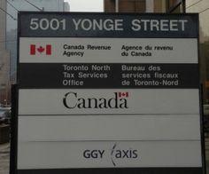 A Toronto Chartered Accountant Views on Voluntary Disclosure Canada Toronto, Chartered Accountant, Accounting, Business Accounting, Beekeeping