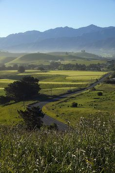 Kaikoura, New Zealand Oh how I want to go here!