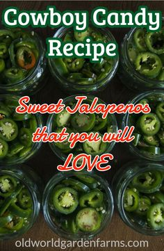Cowboy Candy - a sweet jalapeno recipe that is purely addicting!!! #cowboycandy #sweetjalapeno #jalapeno #recipes #gardenrecipes #canningjalapeno #preserving #addictingfoods #oldworldgardenfarms