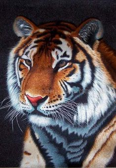 Tiger, silk embroidery art, hand embroidered with silk threads, Suzhou embroidery China, Su Embroidery Studio