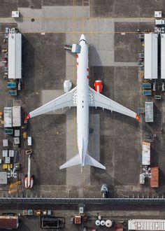 Lion 737, BFI.jpg