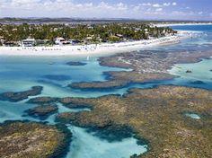 Playas con piscinas y acuarios - 01.03.2015 - lanacion.com