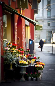 Flower Shop in Milan, Italy