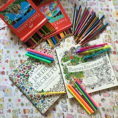 Meus livros e materiais de colorir