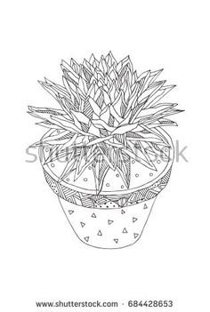 Agave in a pot. Hand-drawn floral pattern in black and white. Adult coloring book page, textile and tattoo design. Vector background illustration. Zendoodle.