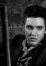 Happy 81st Birthday Elvis!!! January 8, 1935 the King of Rock and Roll was born and touched our hearts forever!