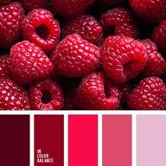 Raspberries are my favorite! Color Palette #3146 | Color Palette Ideas | Bloglovin'