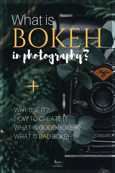 Bokeh in Photography? A simple explanation of Bokeh in Photography Dslr Photography Tips, Landscape Photography Tips, Photography Challenge, Photography Tips For Beginners, Photography Lessons, Photoshop Photography, Iphone Photography, Photography Tutorials, Digital Photography