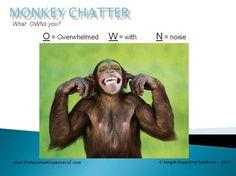 What OWNS you?  www.ProfessionalOrganizerAZ.com #MonkeyChatter #GetOrganized #AndreaBrundage #ProfessionalOrganizer #Arizona