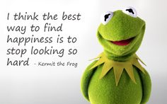 a very wise frog