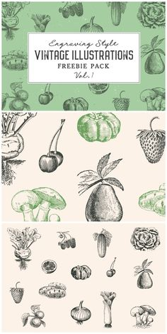 Free Vintage Illustrations Vol. 1 - Set of 14 free engraving style illustrations of vegetables and fruits Engraving Illustration, Free Fruit, Vintage Illustrations, Graphic Design Inspiration, Project Ideas, Victorian, Graphics, Vegetables, Art
